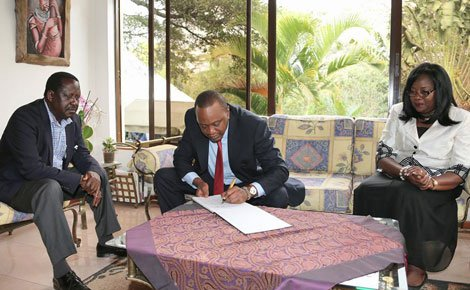 Raila Odinga1 - From William Ruto To Aden Duale, Politicians Who Own Expensive Homes