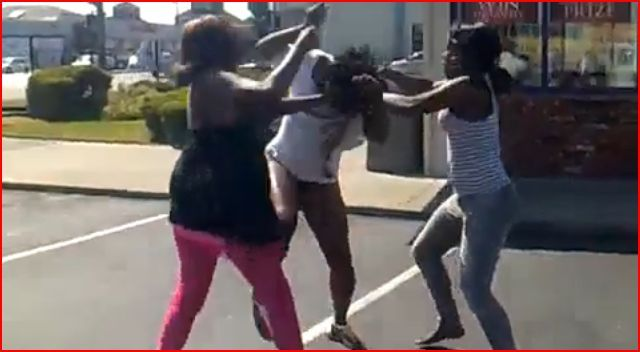 Black Women Fighting Video