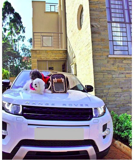 Vera Sidika range - 10 Expensive things Vera Sidika owns that can fund a Governor's campaign