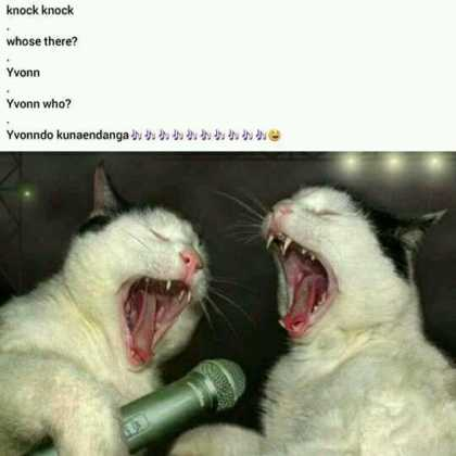 15871569 1800945470157228 1038756710325099471 n 420x420 - These Knock Knock Jokes About Kenyan Songs Will Kill You!