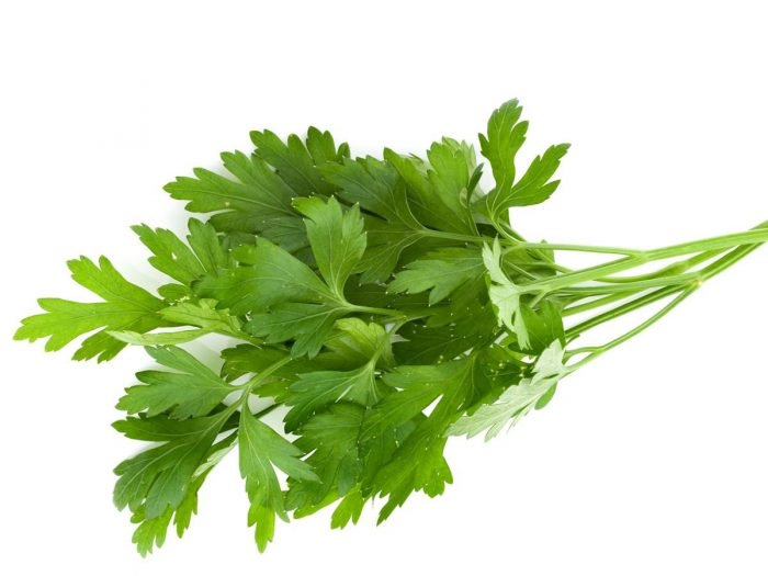 Parsley2 - Revealed! Things making your breath so bad and what to do