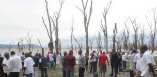 Lake Nakuru search
