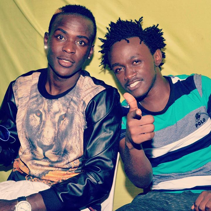 baha 1 - 'Fanya collabo na Ringtone na Bahati' Willy Paul told by hilarious fans