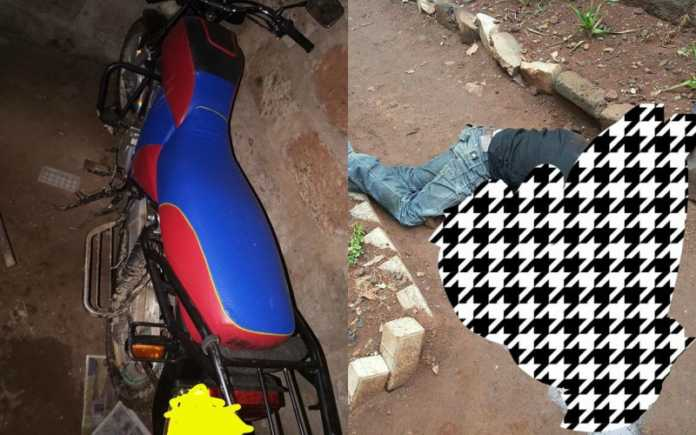 Dandora rapists killed