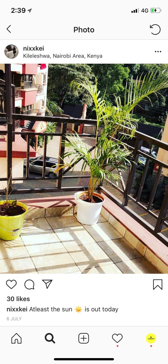 Monica Kimani's apartment