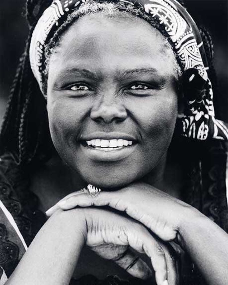 wangari - From Michelle Obama to Wangari Maathai: Four must read books by women authors