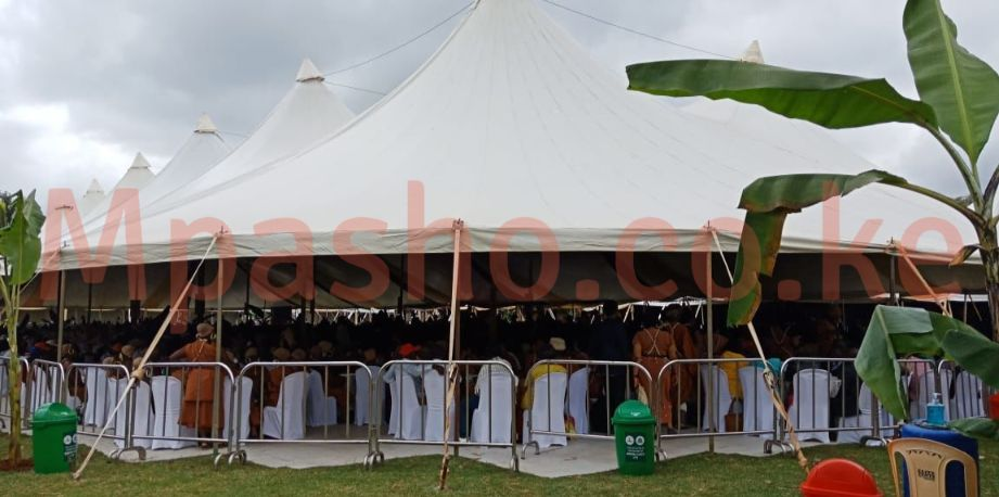 Anne Waiguru kamotho wedding