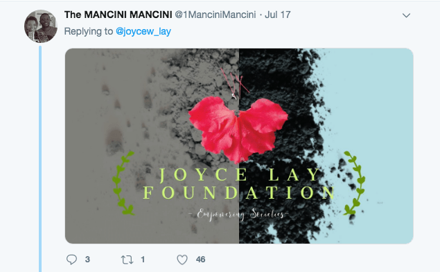 Screen Shot 2019 07 19 at 7.34.26 AM 1 - 15 savage and hilarious memes calling out Joyce Lay for asking for free logos